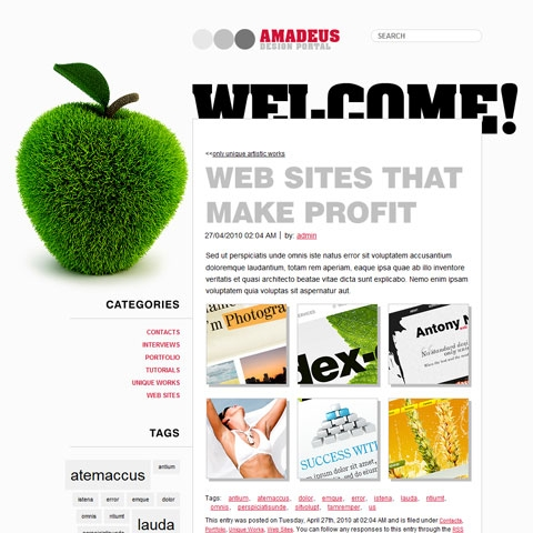 SEO WP Theme